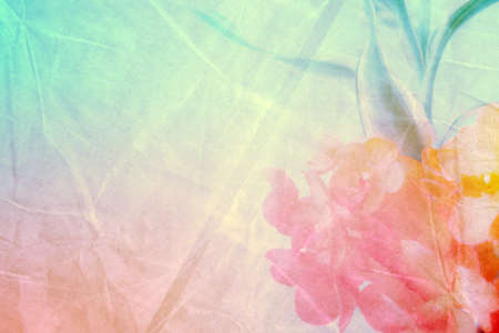 Sweet and pastel color  flower, Soft and blurry focus photo in vintage style, blurry image Stockfoto