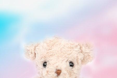 Cute teddy bear with sky background