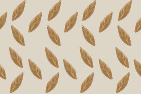 Seamless brown leaves icons on a pastel background Stockfoto
