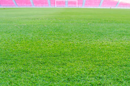Green grass in soccer stadium. soccer field grass with stadium. focus to grass.