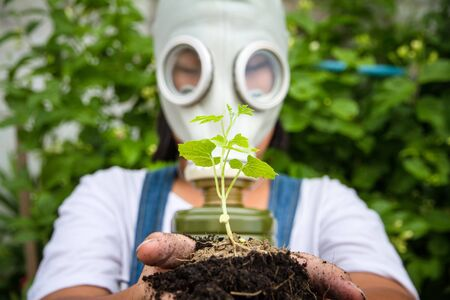 gasmask: a plant and a man with mask Stock Photo