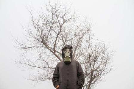 toter baum: Girls gas mask standing in front of a dry tree.