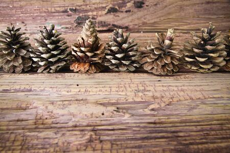 pinaceae: pine nuts on the wooden table. Stock Photo