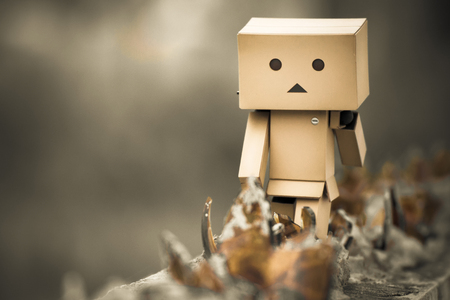 convinced: Danboard, Danbo first appeared in chapter 28 of the manga, first issued in April 2006. Yotsuba Koiwais friend Miura Hayasaka created the costume out of cardboard boxes as a science project, but 5-year-old Yotsuba is convinced its a real robot. The Japan