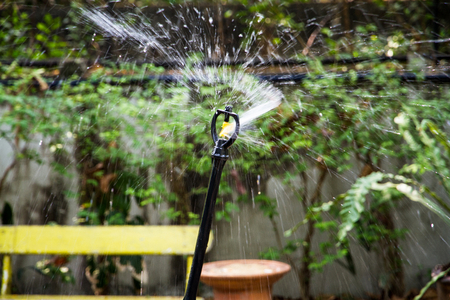 water sprinkler: water sprinkler in garden. Stock Photo