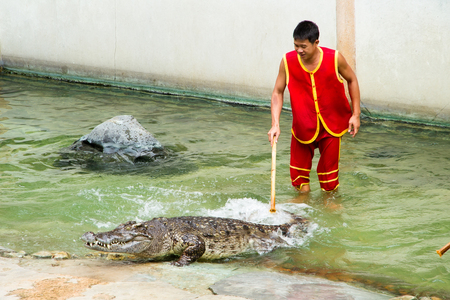 samut prakan: Samut Prakan, Thailand - January, 04, 2017 : Show the risk of death Crocodile show at crocodile farm in Samut Prakan, Thailand.This exciting show is very famous among among tourist and Thai people.