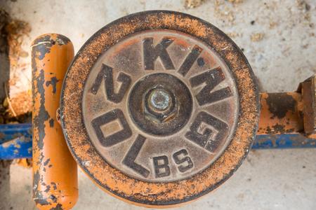 20 lb 鋳鉄製ダンベル プレート