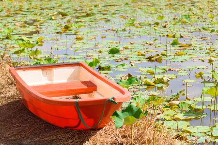 The orange fiberglass boat parked on the banks of the lotus pond Stock Photo