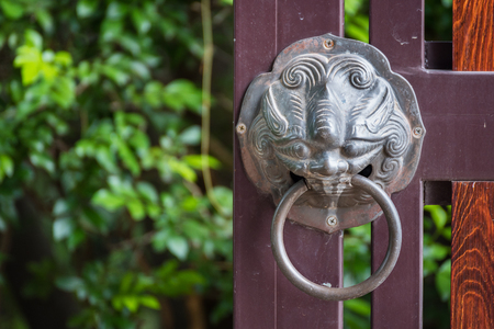lionhead: A brass lionhead knocker on an old gate