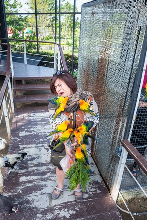 Phetchaburi, Thailand - November, 25, 2017 : Unidentified name Women are happy with yellow and orange parrot in a big cage at Phetchaburi, Thailand 에디토리얼