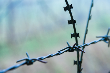 Protective fencing specially protected object of barbed wire. Stamped barbed wire