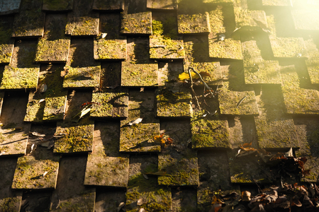 Moss on the roof, old wooden house with sunlight.Thailand