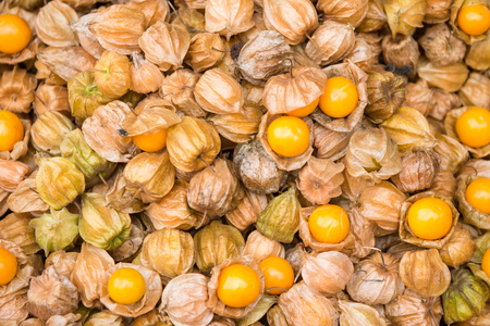 Pile of cape gooseberry on sale in the market.Thailand Stock Photo