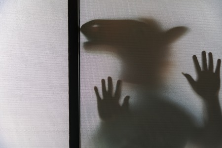 Shadow blur of man in horse head rubber mask.Man behind the frosted glass.Mystery man.Halloween funny background.Blur picture Stock Photo