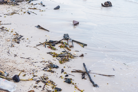 Branch tree plastic rubbish dump on sand sea beach from deep sea after finish strong wind.Thailand