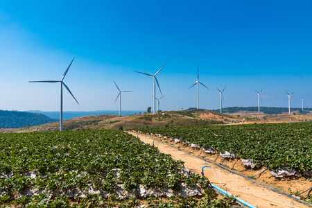 Power of wind turbine generating electricity clean energy with cloud background on the blue sky.Global ecology.Clean energy concept save the world Фото со стока