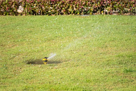 Automatic sprinkler system watering the lawn on a background of green grass.Thailand