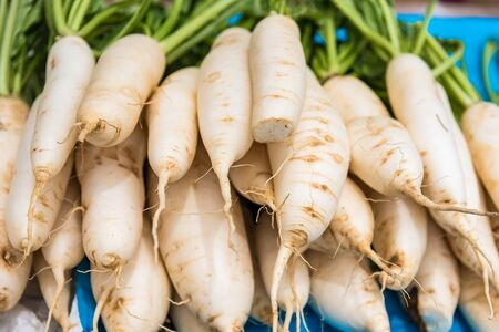 White radish prepare for sell on street fresh market.Thailand