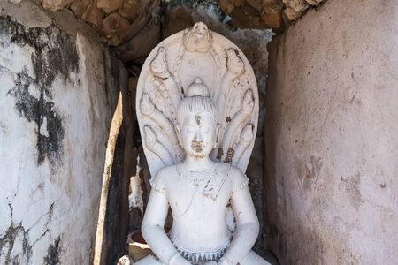 The Buddha stature cover with seven head naga stature