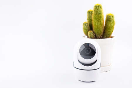Wireless ip camera surveillance / CCTV security camera and Cactus in white celamic pots isolated on white background Banco de Imagens