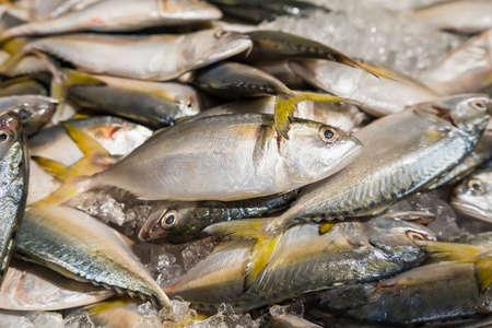 Fresh fish on ice display in a supermarket. Фото со стока