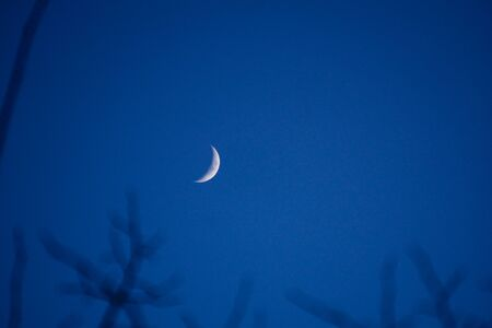 crescent: Crescent Moon on a Clear Night. Stock Photo