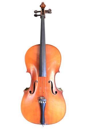 A standard modern violin shown from the front, Thailand Stock Photo