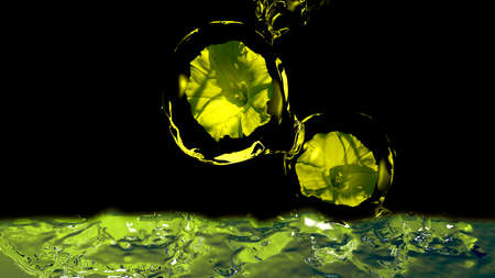 Flowers in waterballs falling into water. 3d illustration Banco de Imagens