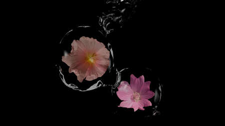 Wild flowers in water balls. 3d illustration