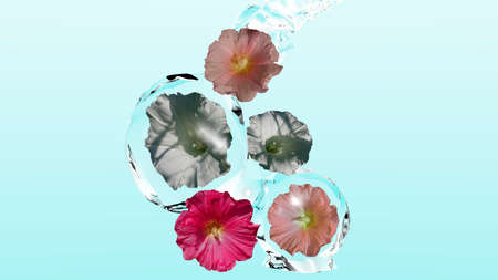 Wild flowers enveloped by water on pale blue background. 3d illustration