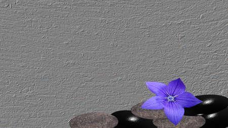 Bimsstein mit violetter Blume auf grauem Hintergrund