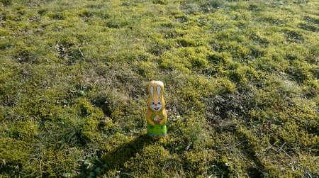 Chocolate hare single on a meadow