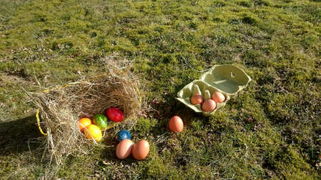Easter basket with colorful eggs and brown eggs in an egg carton on a meadow overgrown with moss