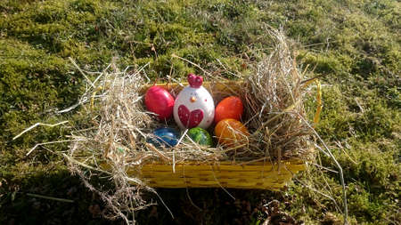 Easter basket with colored eggs and decorative chicken on a meadow overgrown with moss Standard-Bild