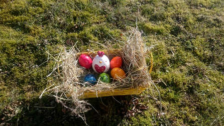 Easter basket with colorful eggs and chicken on a meadow overgrown with moss