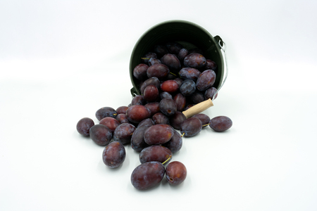 delicious plums fall out of a small decorative bucket.