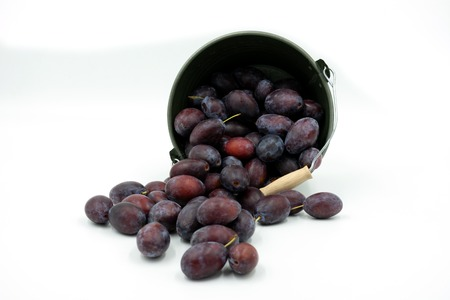 Plums fall out of a small decorative bucket.Studio shot on white background Standard-Bild - 108816942