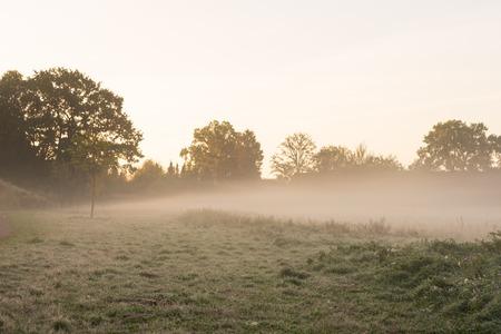 Morning haze over a meadow.Location: Germany, North Rhine - Westphalia, Borken Standard-Bild - 109581717