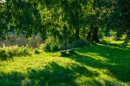 Lonely bench in lush green at the lake with trees. Location: Germany, North Rhine-Westphalia, Hoxfeld Standard-Bild - 110710104