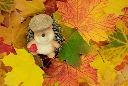 cute hedgehog in maple leaves.Ornamental figure of a hedgehog sits in a pile of leaves. Studio Shot Standard-Bild - 110710151