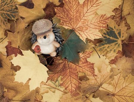 cute hedgehog in leaves.Ornamental figure of a hedgehog sits in a pile of leaves. Studio Shot Standard-Bild - 110710157