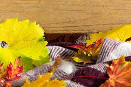 Autumnal background with leaves, scarf and copy space on wood. Stockfoto
