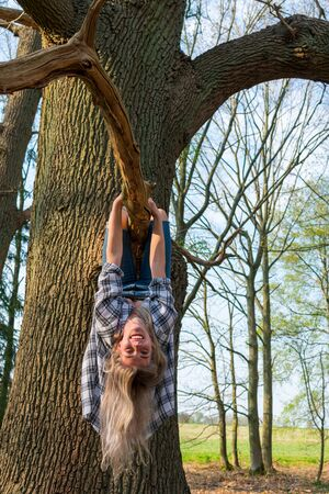 Young woman laughingly hangs upside down on a branch of a thick tree. View from the front. Location: Germany, North Rhine Westphalia, Hoxfeld Standard-Bild