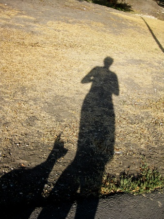 shadow: shadow of dog person Stock Photo