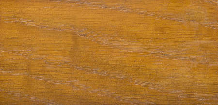 Wood texture. Wood texture for design and decoration