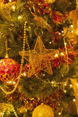 photo of star on a  chistmas tree Stock Photo - 16911154