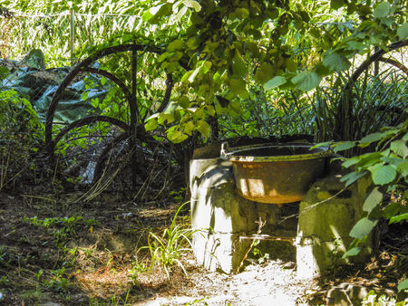 Garden in countryside Stock Photo