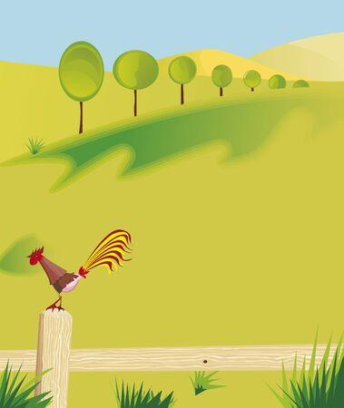 redbreast: summer in fields Illustration