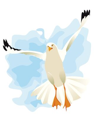wingspan: Seagull flying under wind Illustration