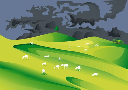 herd: eating cow on meadow